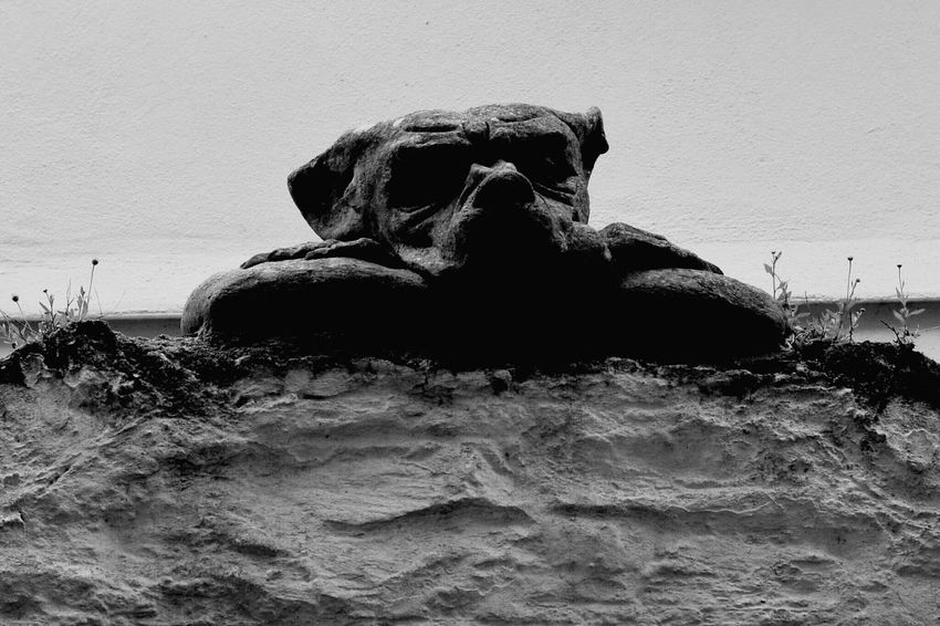 Stone dog in Looe Black And White Collection  Black And White Stone Statue Cornwall Uk Cornwall History Looe Dog Love Dog Dogoftheday Dogslife Dog Photography