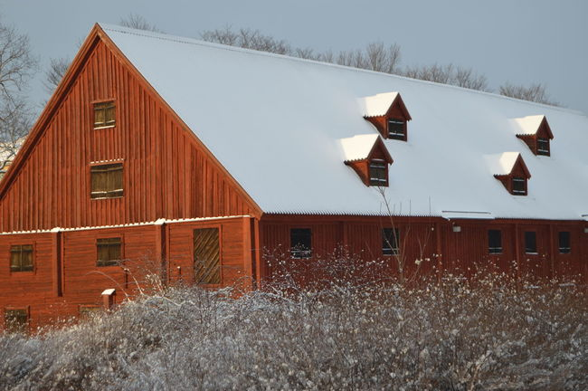 Sockerbruksladan (sugarcane barn) Old Old Buildings Red Outdoors Built Structure Wood - Material Building Exterior Architecture Barn Day No People Snow Sky Cold Temperature Winter Shades Of Winter