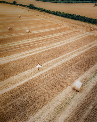 Aerial Shot Drone  Aerial Aerial Photography Aerial View Agricultural Machinery Agriculture Day Dronephotography Environment Farm Farmer Field Harvesting Hay High Angle View Land Landscape Nature One Person Outdoors Plant Rural Scene Scenics - Nature Tranquility