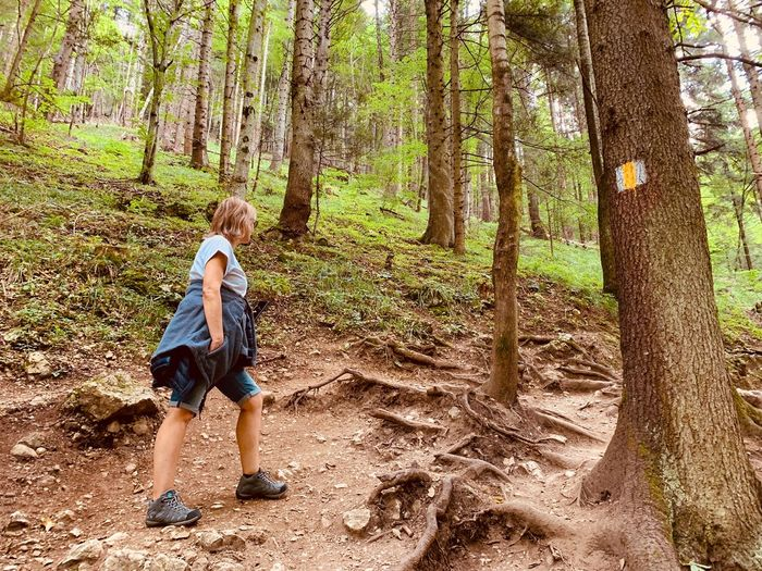 Full length of woman standing by tree trunks in forest