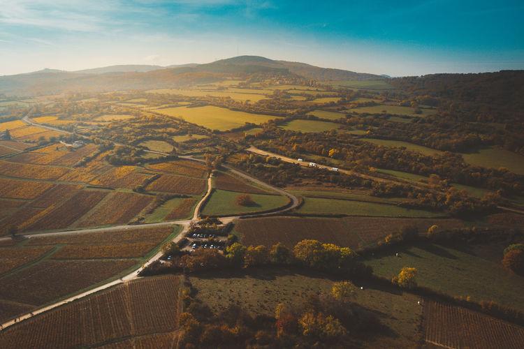 burgandy - France - 2016 ©sebastien.rossi Bourgogne France Agriculture Burgandy Landscape Rural Scene Scenics - Nature Tranquility