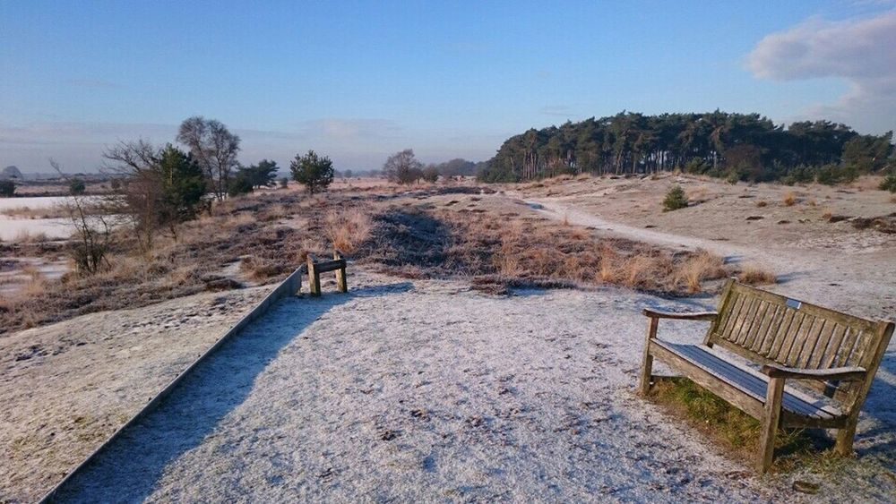Campina Winter Wonderland Snow
