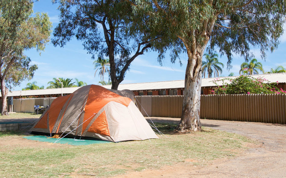 Dome tent in treed campground setting in Kalbarri, Western Australia. Accomodation Assembled Blue Campground Camping Day Dome Kalbarri Nature No People Orange Outdoors Park Poles Rustic Sky Sleeping Sunlight Tan Tent Travel Traveling Tree Vacations Western Australia