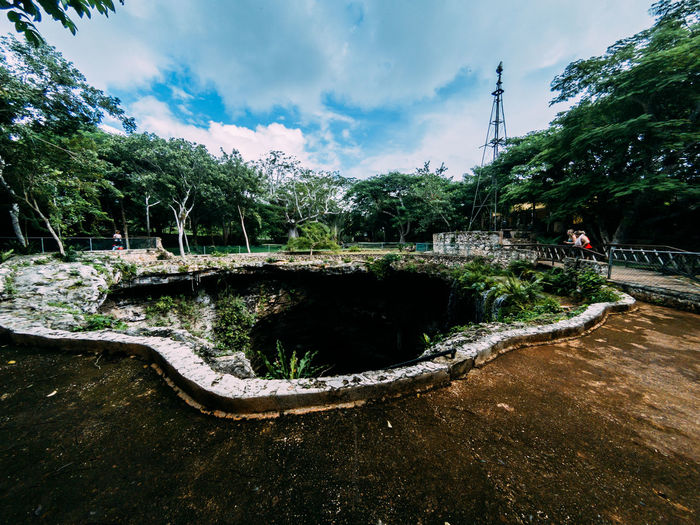 Plant Water Tree Sky Cloud - Sky Nature Day Tranquility Connection Beauty In Nature Reflection Bridge Architecture Growth Scenics - Nature Bridge - Man Made Structure Built Structure Outdoors Tranquil Scene