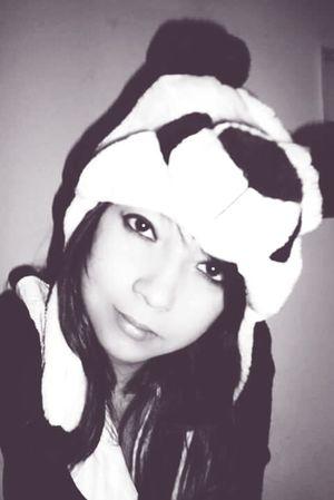 Panda Bear PANDA ♡♡ Pandas♥ Blackandwhite Black & White Black&white