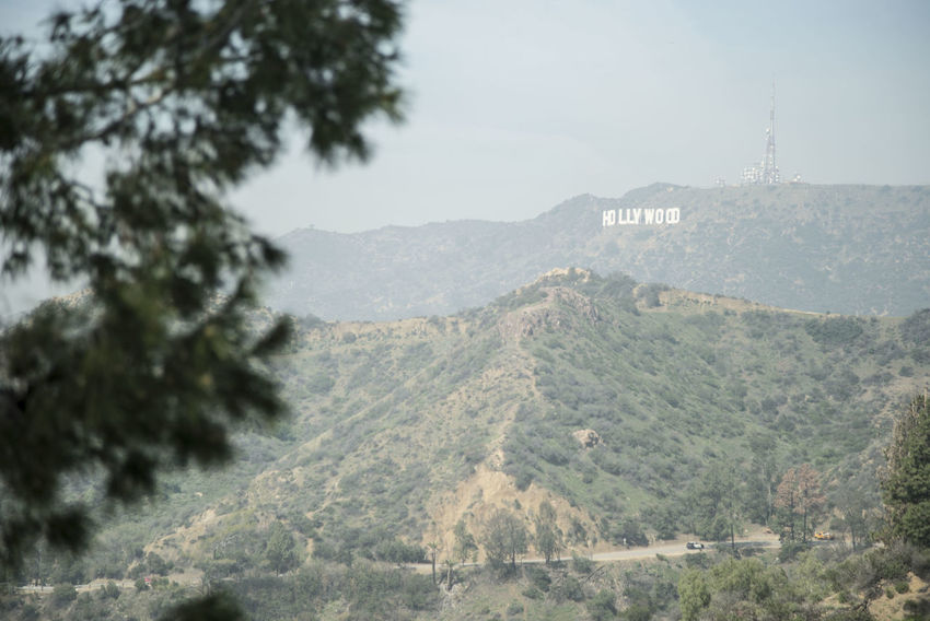 Beach California Hollywood Hollywood Sign La Landscape Los Angeles, California Mountain Road Tranquil Scene