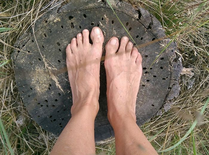 Overhead view shot of foot and wood stump on grass