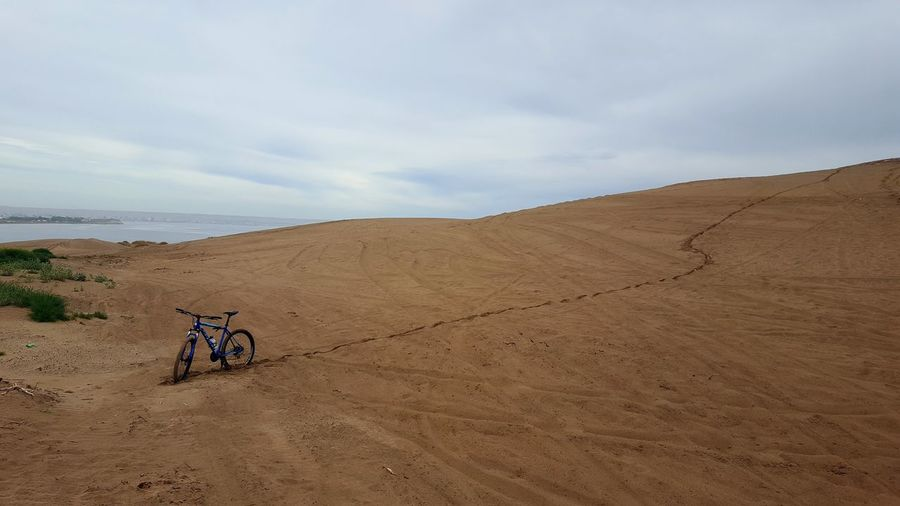 Rear view of people riding bicycle on sand