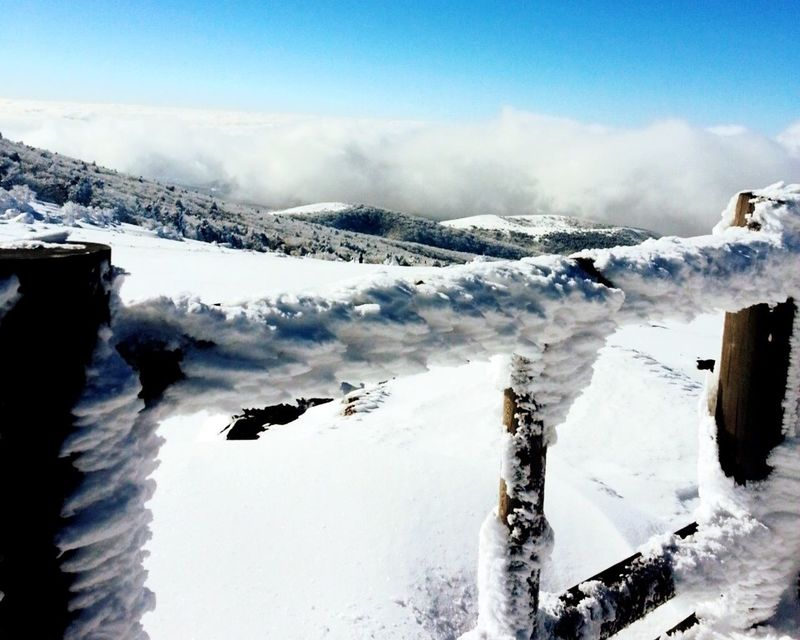 The Great Outdoors - 2016 EyeEm Awards Snow Mountains JEJU ISLAND  Hanla Moutain Korea