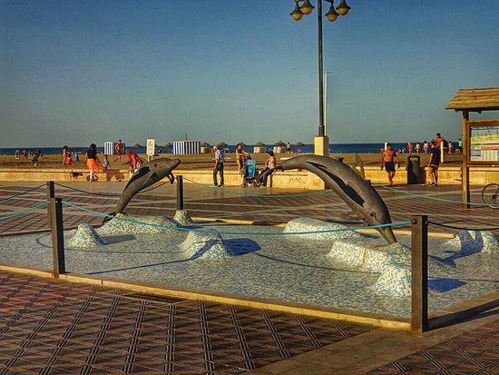 Sunset in the Beach Iggers Valenciagram València Sea Sunshine Dolphins Sun Hot Day