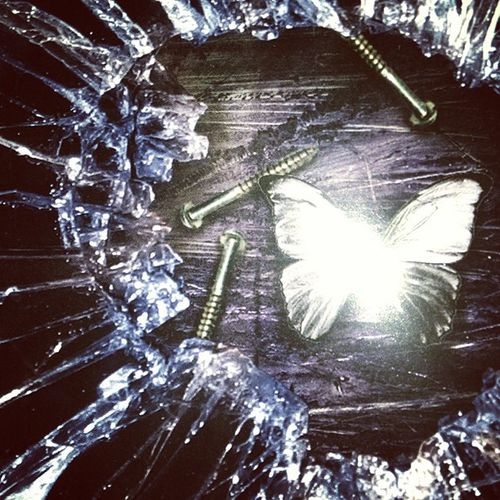 Brokenglass Brokenmirror Shatteredmirror Moth butterfly nails wood seether