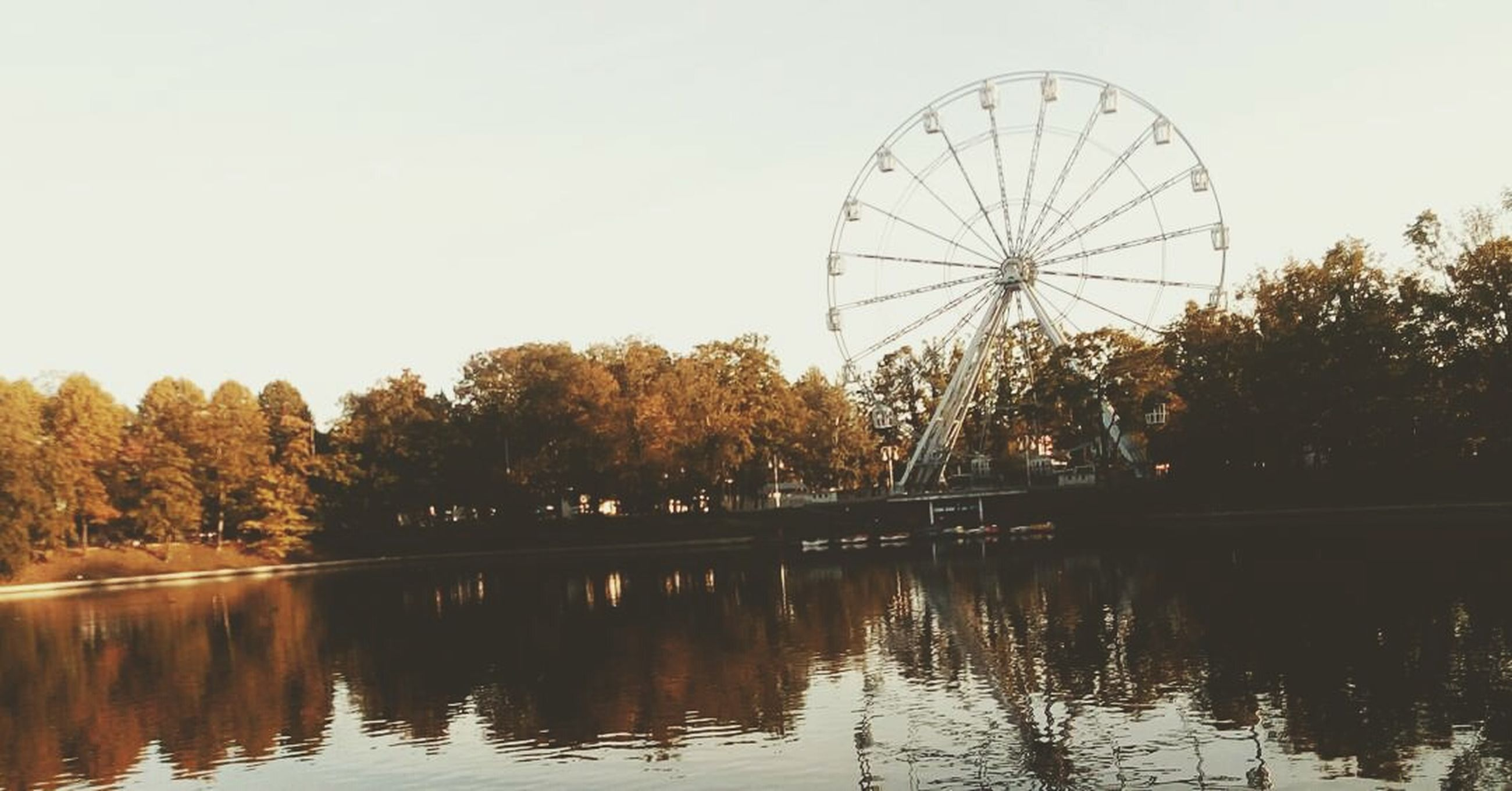 ferris wheel, reflection, amusement park, tree, outdoors, water, no people, nature, vacations, sky, day