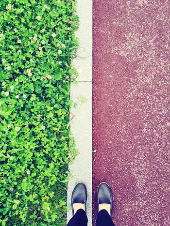 Sidewalk Contrast Parallel Low Section Standing Human Leg Shoe Directly Above High Angle View Human Foot Grass Green Color Human Feet LINE