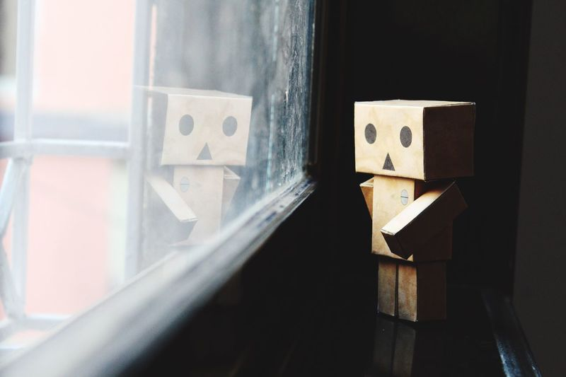 Indoors  Close-up Danbo Danbophotography Reflection