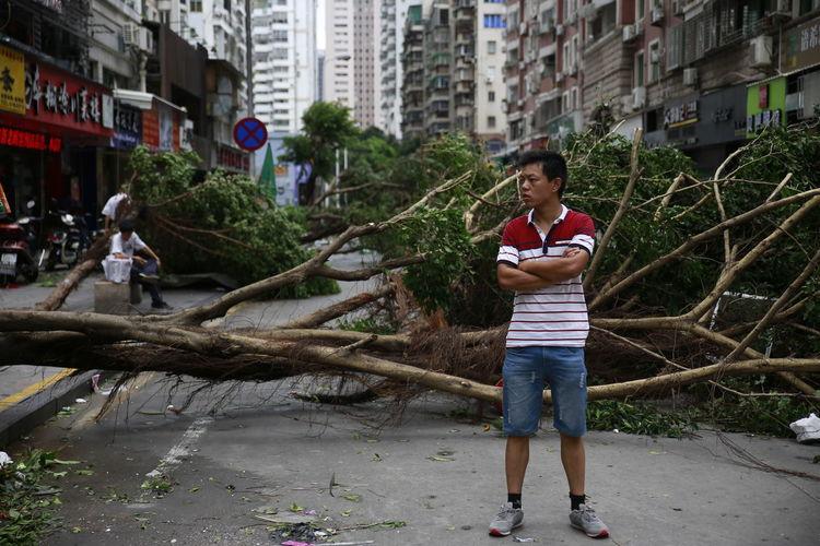 City After Typhoon Desaster City Landscape EyeEm Masterclass Eyeemphotography EyeEmBestPics EyeEm Gallery EyeEmbestshots Typhoon Xiamen China FuckUpTheWorld Massive Massive Tree