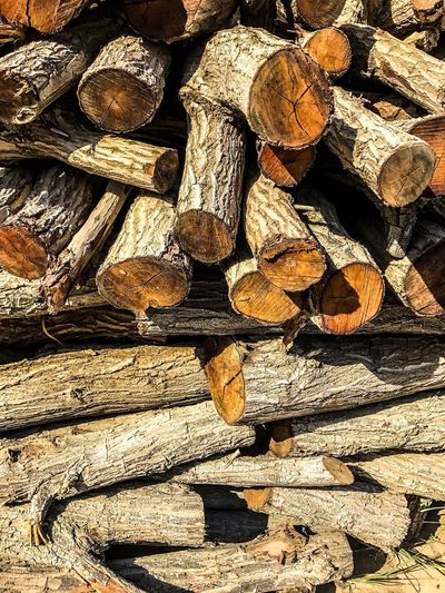 Bunch of woods Timber Firewood Log Woodpile Stack Wood - Material Forestry Industry Wood Lumber Industry Heap Deforestation Shape Backgrounds Full Frame Textured  Fuel And Power Generation Environmental Issues No People Large Group Of Objects Day The Photojournalist - 2017 EyeEm Awards The Street Photographer - 2017 EyeEm Awards The Great Outdoors - 2017 EyeEm Awards The Architect - 2017 EyeEm Awards The Portraitist - 2017 EyeEm Awards