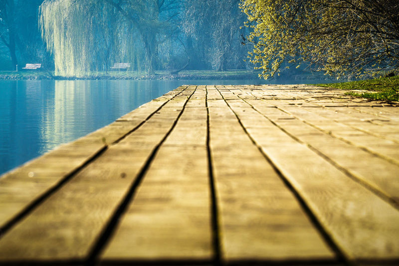 Maschsee pier during spring time Water Wood - Material Day Nature No People Tree Surface Level Footpath Wood The Way Forward Outdoors Sunlight Blue Tranquility Lake Pier Direction Plant Reflection Wood Paneling Swimming Pool Maschsee Hannover EyeEm Nature Lover Landscape