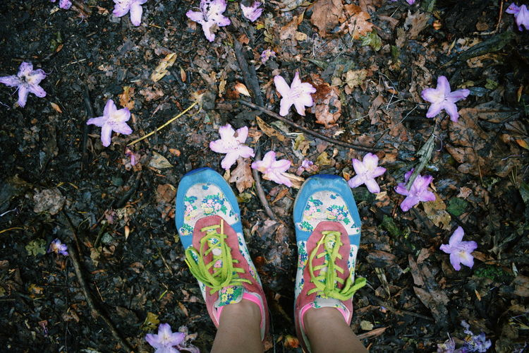 Bright Bright Colours Bushy Park Close-up Day Dead Flowers Directly Above Flower Flower Heads Fragility High Angle View Human Body Part Human Leg Low Section Nature One Woman Only One Young Woman Only Outdoors Rhododendron Shoes Sneakers Standing Trainers
