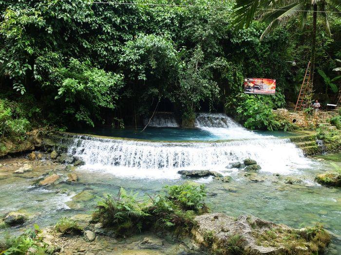 Cebu City, Philippines Beauty In Nature Flowing Water Green Color Kawasan Falls Plant Scenics - Nature Tree Water Waterfall Summer Exploratorium The Traveler - 2018 EyeEm Awards