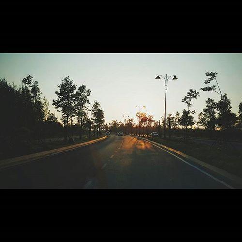 r o a d t o g l o r y Tya714 Tyaeze Vscocamgroup Biakkch Igersmalaysia @igersmalaysia @borneophoto_hunter Streetphotography Streettogether