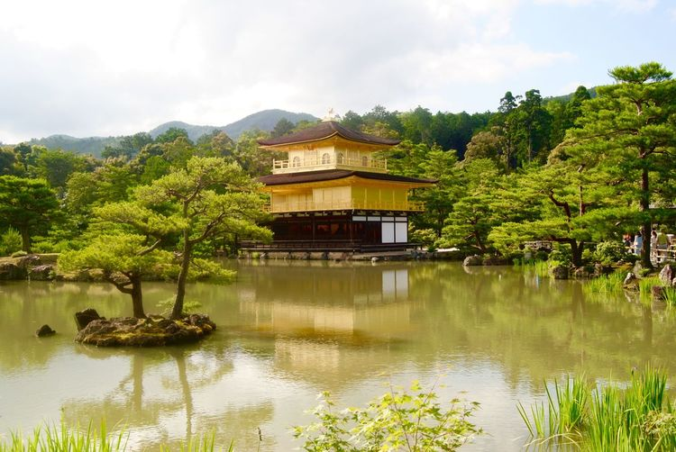Golden Pavilion  History Japan Lake Outdoors Reflection Reflection Lake Sky Tranquility Travel Destinations Tree Water