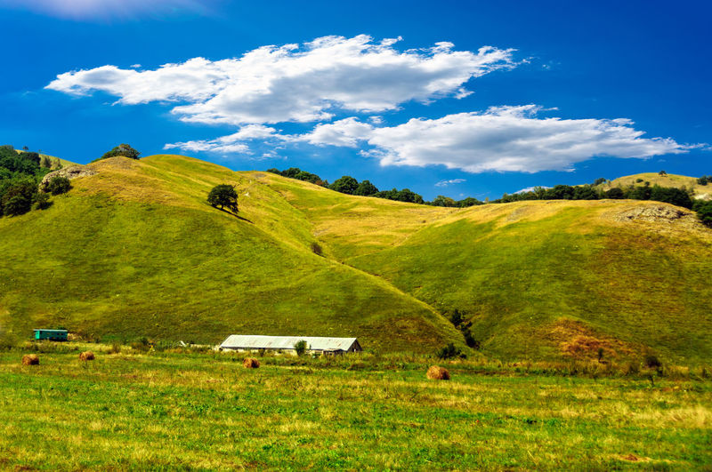 Agriculture Field Farm Landscape Crop  Nature Rural Scene Outdoors Scenics Social Issues Hill Tree Grass Cereal Plant Beauty In Nature No People Rice Paddy Terraced Field Day Sky Tranquility Grass Hill Rural Landscape Green Hill Greenary