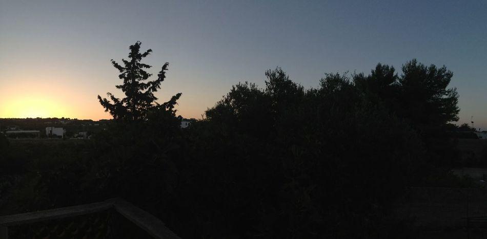 Wow *-* 6am Dawn Santamaria Leuca