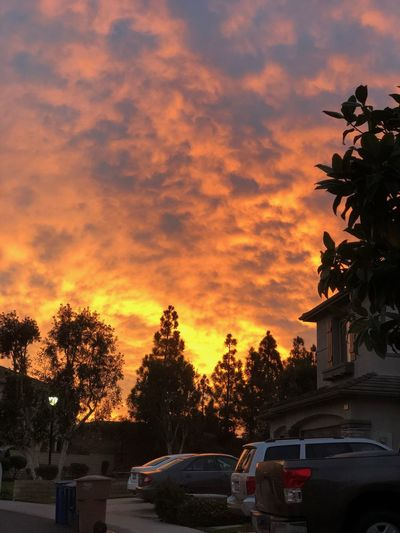 Cars on road against orange sky