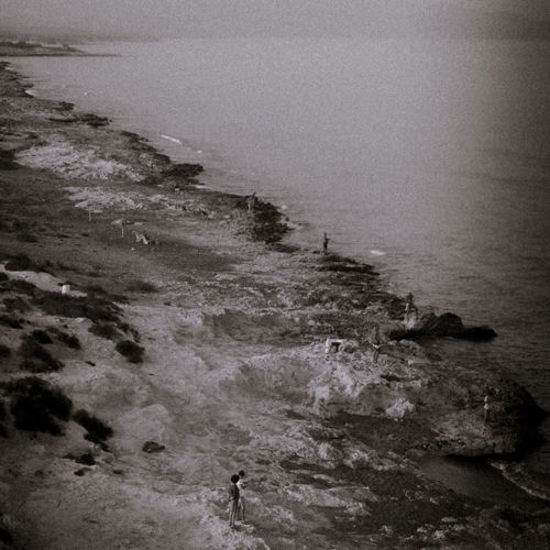 Aguilas Cabo