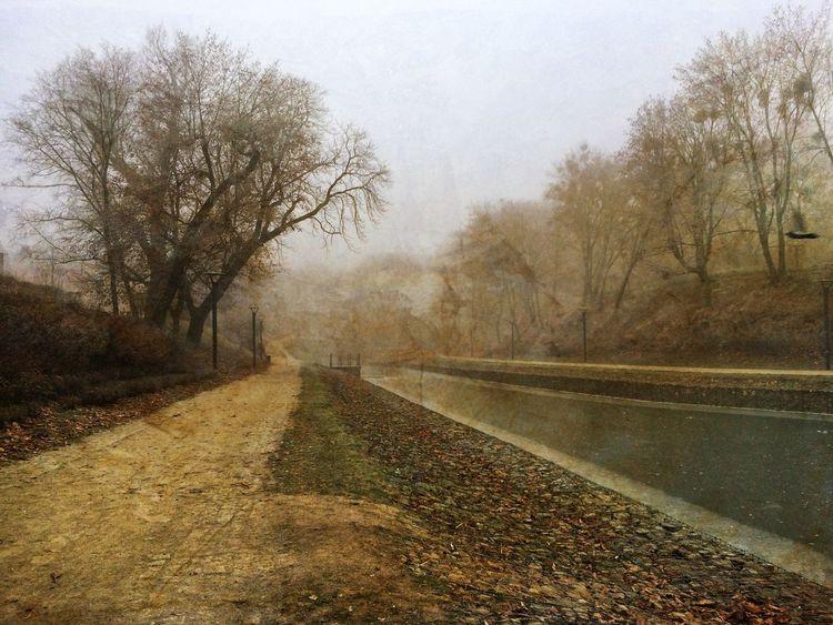 Autumn IPhoneography EyeEm Best Edits IPSPaint