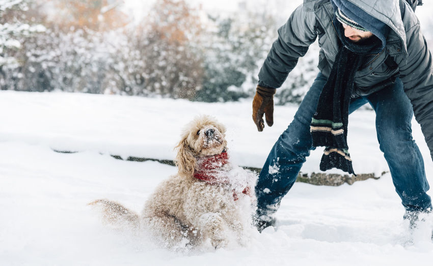 Mid adult man playing with dog on snow covered field in park