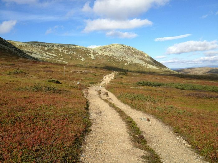 Autumn in Swedish mountains. Autumn Autumn Colors Colours Of Autumn Mountains Mountain View EyeEm Nature Lover