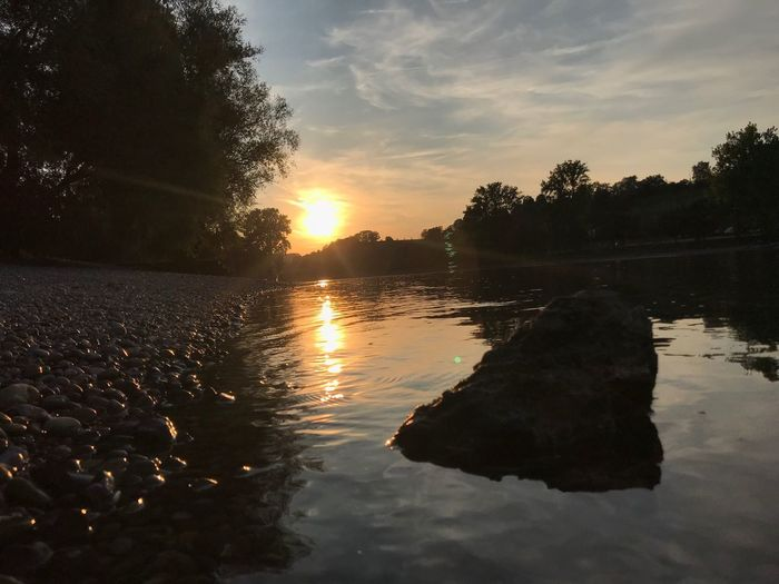 Diessenhofen Rhein Sky Water Sunset Tree Reflection Plant Tranquility