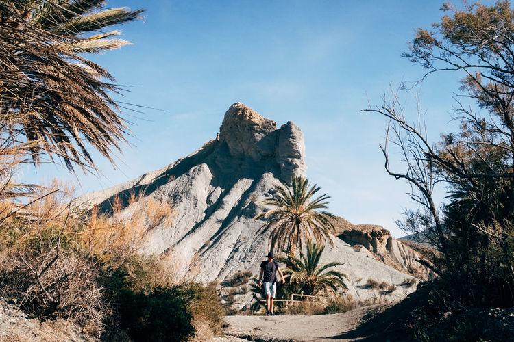 Film Palm Tree SPAIN Film Photography Filmset Mountain Palm Trees Tabernas Tabernas Desert Western Script Go Higher Summer Exploratorium