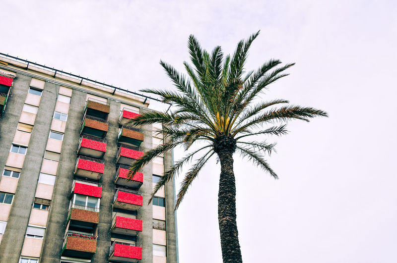 60's Architecture Adapted To The City Architecture Balkony Building Exterior Built Structure Cloudy Sky Day Low Angle View No People Outdoors Palm Tree Red Color Sky Fresh on Market 2017 The Architect - 2017 EyeEm Awards Urban Geometry Urban Nature