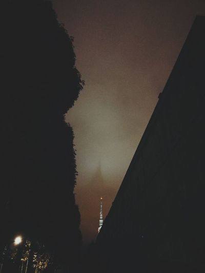 Architecture Building Exterior Built Structure Night Silhouette No People Outdoors Sky City Tree Shadow Mole Antonelliana Illuminated Torino Torino, Italy Torinobynight Torino , La Mole Moleantonelliana Night View Night Sky The Week On EyeEm