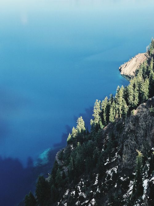 Crater Lake Idyllic Scenery Oregon Deep Lake Landscape Crater Lake National Park Crater Lake Nature Beauty In Nature Mountain Tranquility No People Growth Day Scenics Tree Outdoors Blue