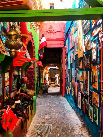 Colourful Fez
