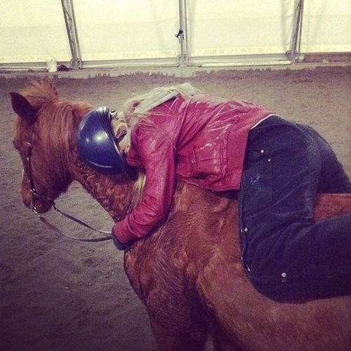 Chels. STAHP. no sleeping on ze horsies. Chels. @young_and_in_love Barntoday TiredAF