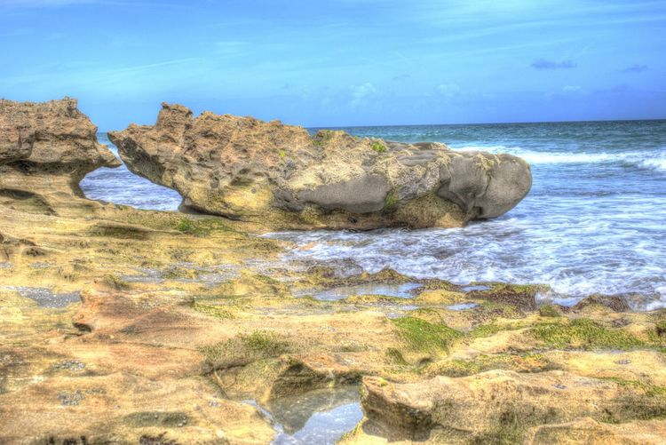 Blowing Rocks Preserve Jupiter Florida Jupiter Island Beach Beauty In Nature Blue Cliff Day Hobe Sound Horizon Over Water Landscape Nature No People Outdoors Rock - Object Rock Formation Scenics Sea Sky Tranquility Water Wave