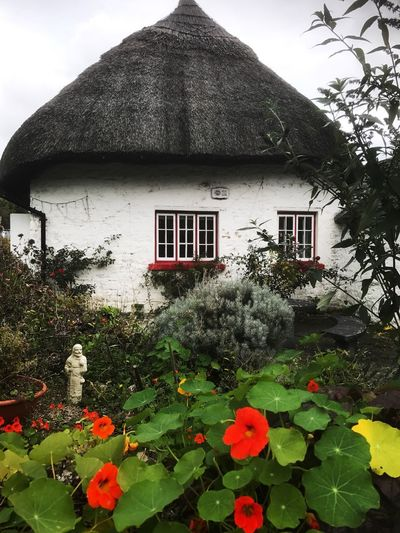 Thatched cottage, Ireland Connected By Travel