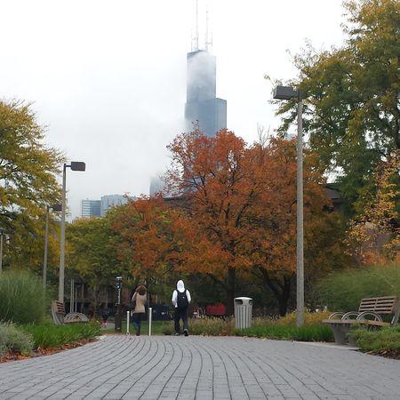 Uic Chicago Urban Landscape Urban Nature