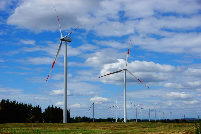 Mininco winds power Alternative Energy Cloud - Sky Day Environmental Conservation Fuel And Power Generation Grass Industrial Windmill Nature No People Outdoors Renewable Energy Rural Scene Sky Technology Tree Wind Power Wind Turbine Windmill