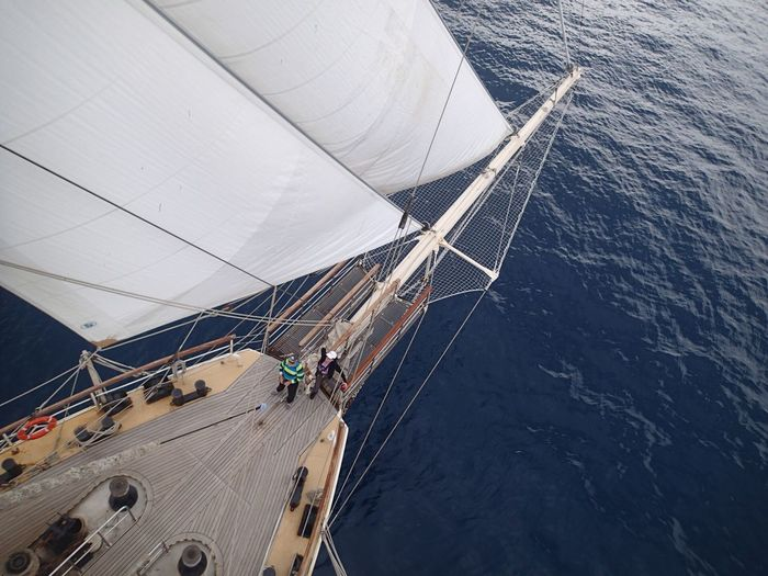 High Angle View Of People On Sailboat Sailing At Sea