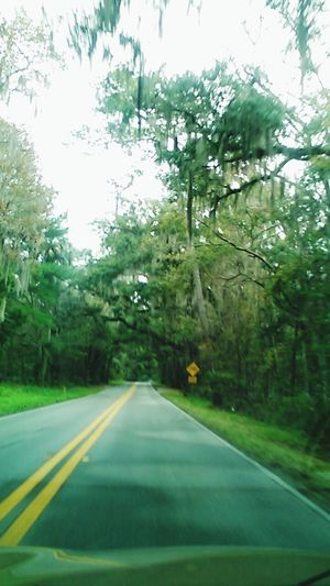 Last time driving down gorgous florida roads- Check This Out Hello World Android Taking Photos