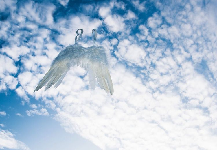 Abandoned angel wings flying against cloudy sky