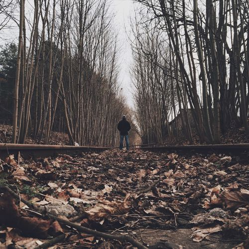 EyeEm Best Shots Poznań Poland VSCO Silhouette A Walk In The Woods Iphoneonly IPhoneography IPhoneographer IPS2015Fall