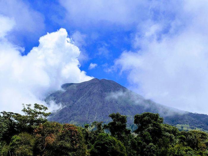 #tree #hiking #Costa Rica #costarica #cartago #turrialba Tree Mountain Sky Cloud - Sky Volcano Active Volcano Volcanic Activity Volcanic Crater Ash
