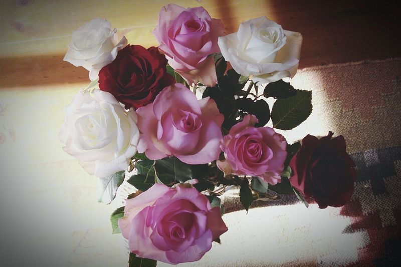 We can complain because roses have thorns, or rejoice because thorns have roses. Natures Diversities Beautiful South Africa Roses Flowers Photography Found On The Roll Amazing
