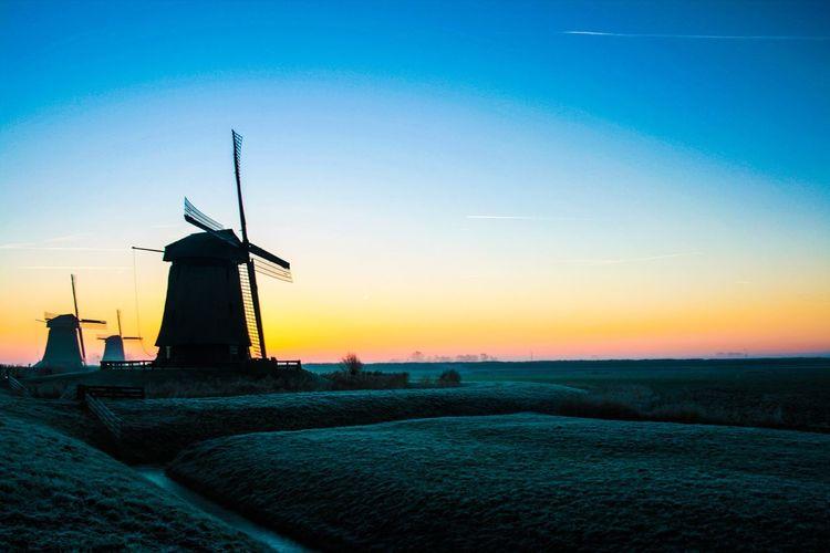 Morning glory with dutch windmills